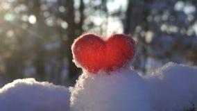 Le rouge felted le coeur de laine sur la neige et éclairé à contre-jour par le mouvement lent de coucher de soleil d'hiver banque de vidéos