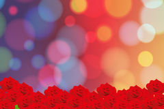 Le rouge a monté Photo libre de droits