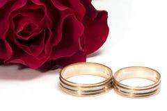 Le rouge a monté - concept de mariage Images libres de droits
