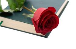 Le rouge a monté dans un livre Image libre de droits