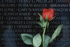 Le rouge a monté devant des vétérans du Vietnam commémoratifs Photographie stock
