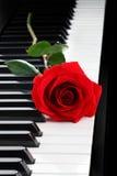 Le rouge a monté sur le piano photographie stock libre de droits