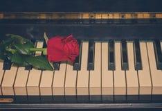 Le rouge a monté sur le piano Image stock