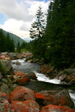 Le rouge oscille le fleuve Photos stock