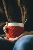 Le rouge a tricoté la tasse de laine avec le modèle de coeur dans des mains femelles Photos libres de droits