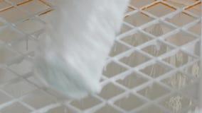Le rouleau de peinture immergeant dans un seau avec la peinture blanche clips vidéos