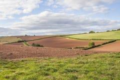 Le roulement anglais met en place la scène rurale de campagne photos libres de droits