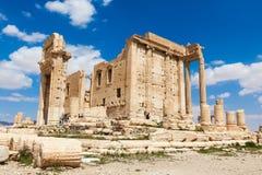 Le rovine antiche di Palmira, Siria fotografie stock