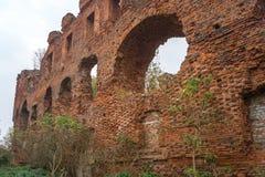 Le rovine del castello Ragnit in Neman, Russia immagine stock