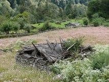 Le rovine della casa in mezzo a grano saraceno sistemano - il Nepal Immagine Stock Libera da Diritti