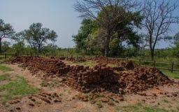 Le rovine di Albisini vicino a Hazyview nel Sudafrica fotografia stock libera da diritti