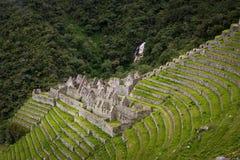 Le rovine di inca di Winay Wayna lungo Inca Trail a Machu Picchu nel Perù Fotografia Stock Libera da Diritti