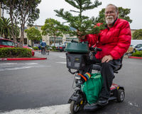 Le résident supérieur de Castro District emmène à la maison un arbre de Noël Photo libre de droits