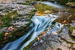 Le ruisseau en automne scénique image libre de droits