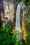 Le ruisseau Purling tombe Springbrook Photographie stock