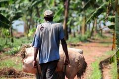 Le Rwanda Image libre de droits