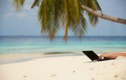 Le séjour s'est connecté sur la plage Images libres de droits