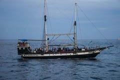 Le ` s è pirati Fotografia Stock Libera da Diritti