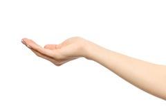 Le ` s de femme a étiré la main avec la paume ouverte Photographie stock