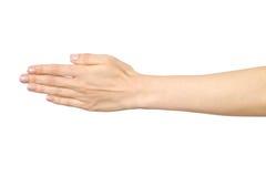 Le ` s de femme a étiré la main avec la paume ouverte Photo stock