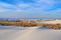 Le sabbie bianche di stupore abbandonano nel New Mexico, U.S.A. fotografia stock