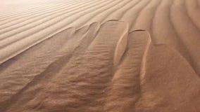 Le sable de désert coule comme l'eau chez l'Afrique du Nord Bechar Algérie, désert arénacé de Taghit banque de vidéos