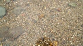 Le sable est sous l'eau calme banque de vidéos