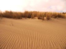 Le sable raye la texture sur le ciel de plage comme fond Photo stock