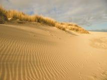 Le sable raye la texture sur le ciel de plage comme fond Image stock