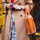Le sac dans la femelle remet le plan rapproché Lunettes de soleil dans la femme de mains Accessoires de dames de mode, bracelets, Image stock