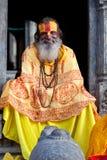 Le sadhu, Nepal Royaltyfri Foto