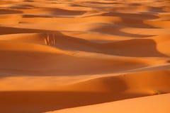 Le Sahara Photos libres de droits