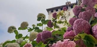 Le Saint-Marin photo stock