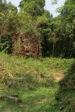 Le sanctuaire Cham de min son Vietnam Royaltyfri Fotografi