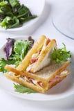 Le sandwich deux avec du jambon et le fromage beurrent des épices, saucisse, pepperoni, chorizo image libre de droits