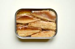 Le sardine inscatolano su un fondo bianco Fotografie Stock