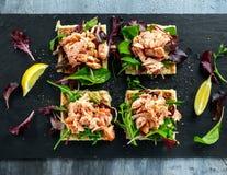 Le saumon fumé s'écaille sur le lit de salade et la pomme de terre irlandaise amincit des casse-croûte, apéritifs Photo libre de droits