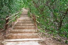 Le scale aumentano la collina. Fotografia Stock