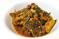 Le scalpore del pesce gatto hanno fritto con l'alimento tailandese della pasta dei peperoncini rossi Fotografie Stock Libere da Diritti