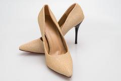 Le scarpe classiche dei tacchi alti dello stiletto nella struttura dorata progettano immagini stock libere da diritti