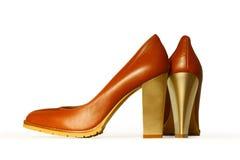 Le scarpe delle donne Fotografia Stock Libera da Diritti