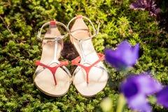 Le scarpe italiane, sandali alla moda si trovano sull'erba Fotografia Stock