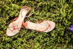 Le scarpe italiane, sandali alla moda si trovano sull'erba Fotografia Stock Libera da Diritti