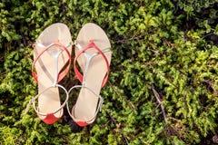 Le scarpe italiane, sandali alla moda si trovano sull'erba Immagine Stock Libera da Diritti