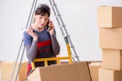 Le scatole commoventi dell'appaltatore della donna nel concetto di rilocazione Immagine Stock Libera da Diritti