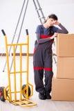 Le scatole commoventi dell'appaltatore della donna nel concetto di rilocazione Immagini Stock