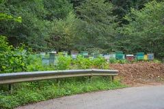 Le scatole variopinte di legno sono colori luminosi dipinti Di alveari colorati multi di legno per le api fotografie stock