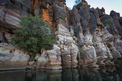 Le scogliere devoniane sbalorditive del calcare della gola di Geikie hanno riflesso nel fiume di Fitzroy Immagine Stock