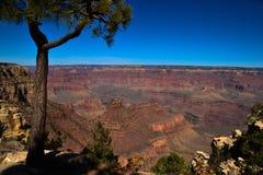 Le scogliere di Grand Canyon Immagine Stock Libera da Diritti