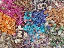Le Seashell perle la texture photographie stock